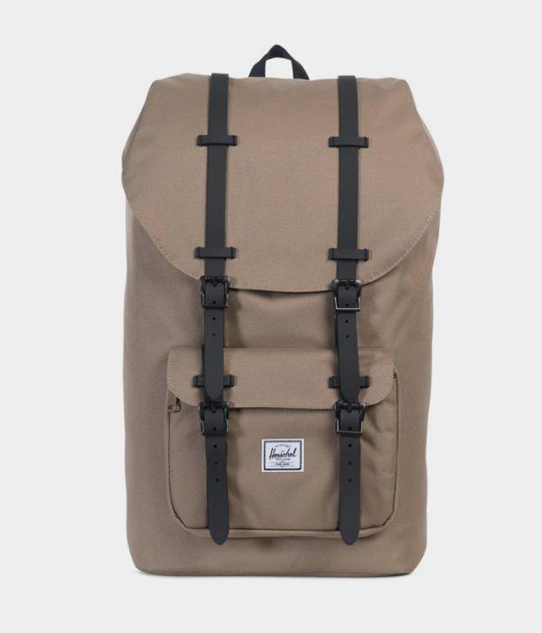 Backpack_3_1